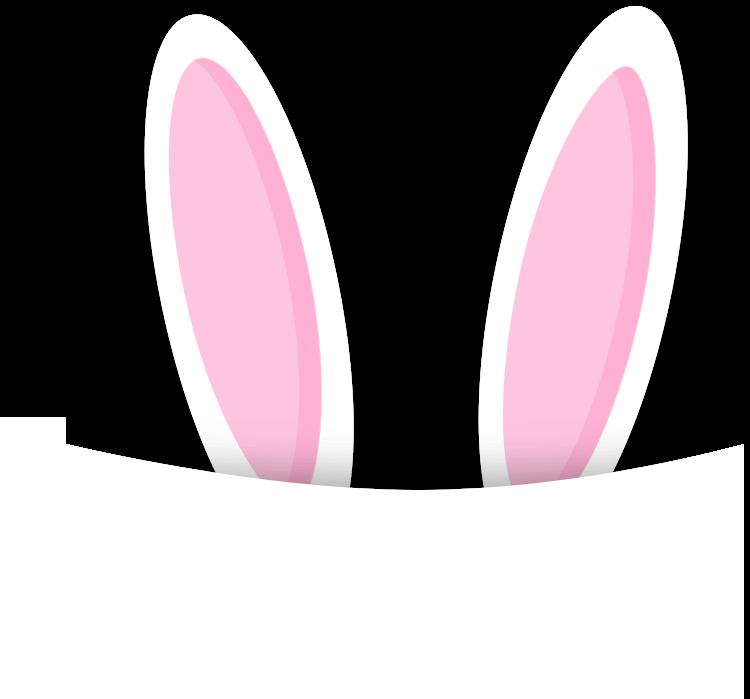 半日活动计划 《桃树下的小白兔》