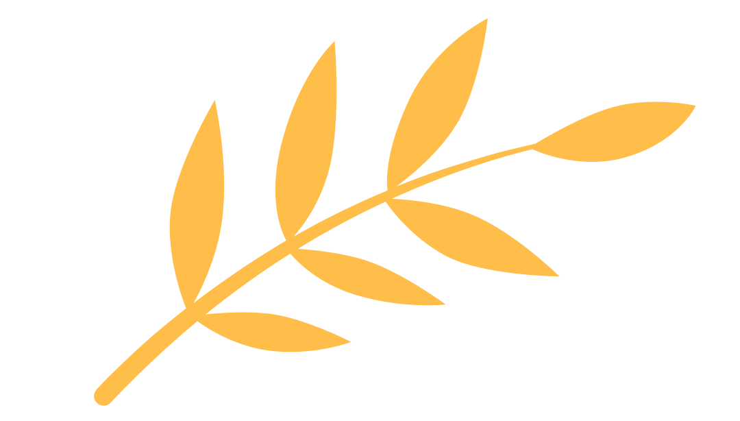 大班主题活动 |《神奇的叶子——茶叶》
